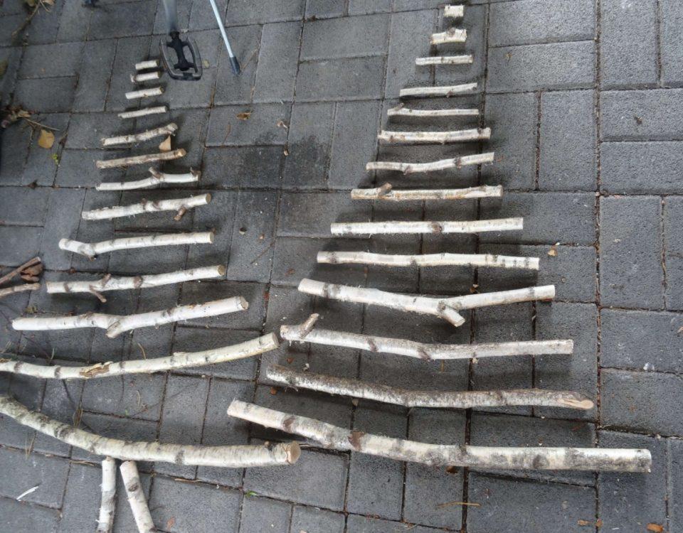 Ein Foto Bild mit Birke Zweige Tannenbaum Deko Weihnachten 2